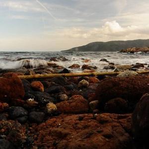 Into the (Wild) Elba - © 2009