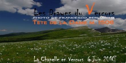 Les Drayes du Vercos 2010 [Cover file 96 foto]