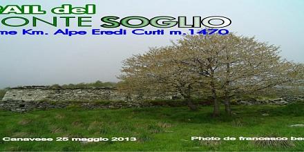 Trail del Monte Soglio 2013 (Cover file 116 foto)
