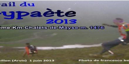 Trail du Gypaète 2013 (Cover file 75 foto)
