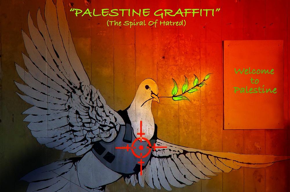 01/2019 - Betlemme - 05/2019 Soggetto ripreso: Graffiti / Street Art - Artista Banksy