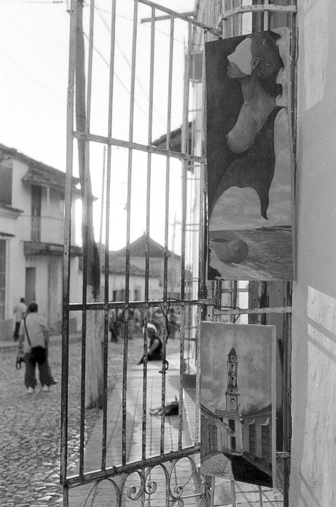 copyright Francesco Riccio - www.francescoriccio.it