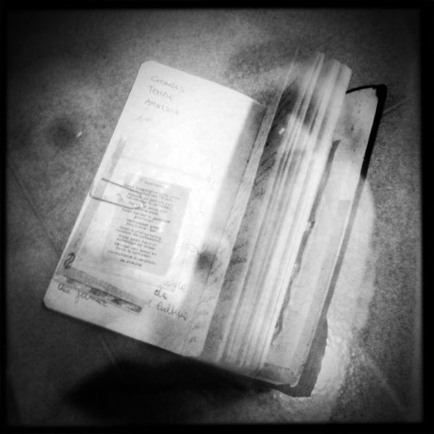 Diario/mente - Appunti ed emozioni. Una sorta di estensione delle mia mente, dei miei ricordi e del mio dimenticare.